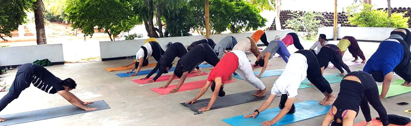 adho mukha svanasana or downward facing dog pose practised as a part of our corporate yoga training session