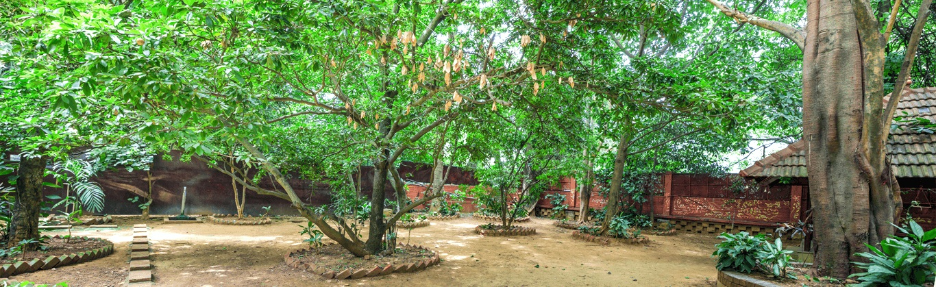 Srikrishna Wellness and Yoga Centre is a unique and beautiful centre in the heart of Malleshwaram filled with ancient trees and greenery, providing  you the perfect and peaceful environment for your daily yoga practice.