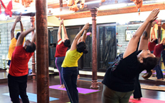 Daily Yoga Classes